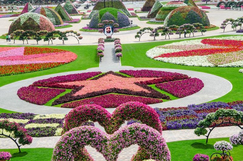 Dubai-Miracle-Garden10