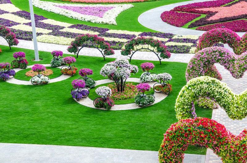 Dubai-Miracle-Garden11