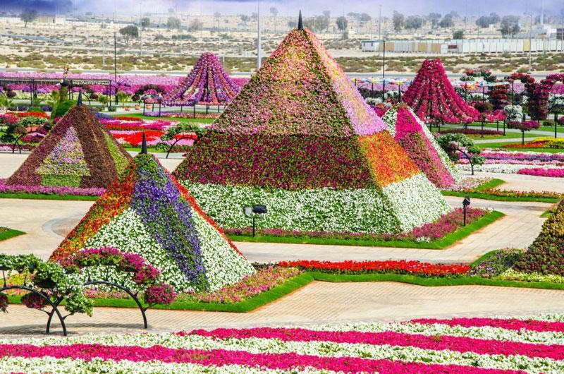 Dubai-Miracle-Garden12